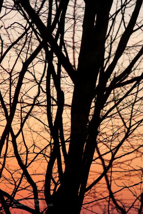 365 - Day 295 - Sunset