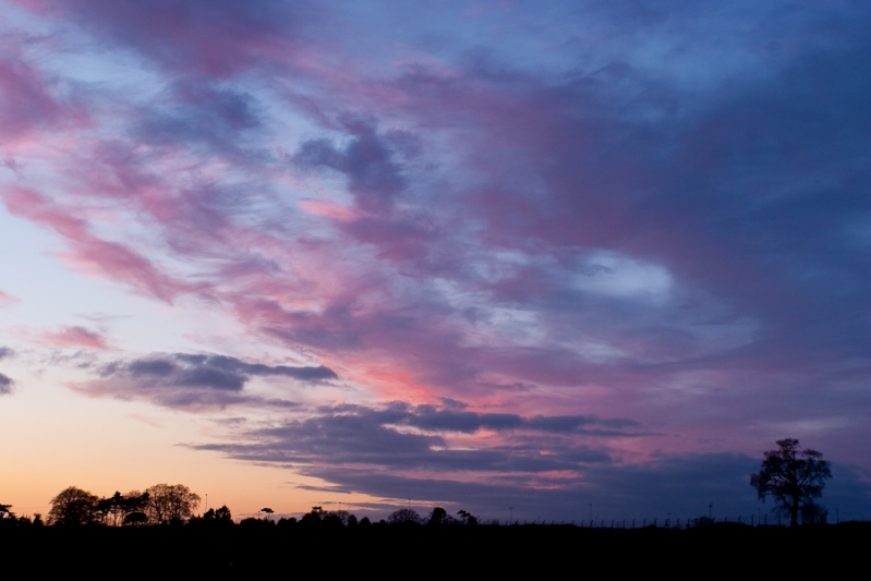 365 - Day 57 - Purple Sunset