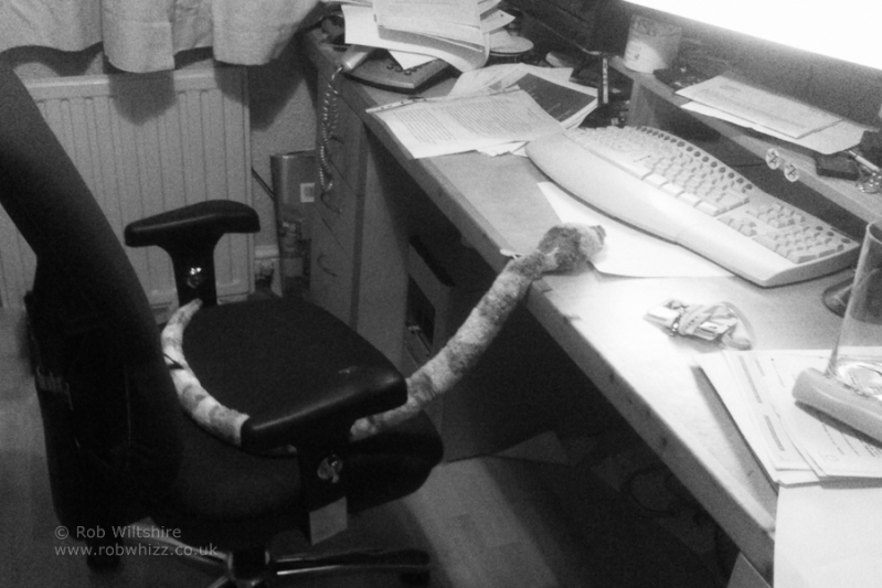 365 - Day 313 - Office Snake