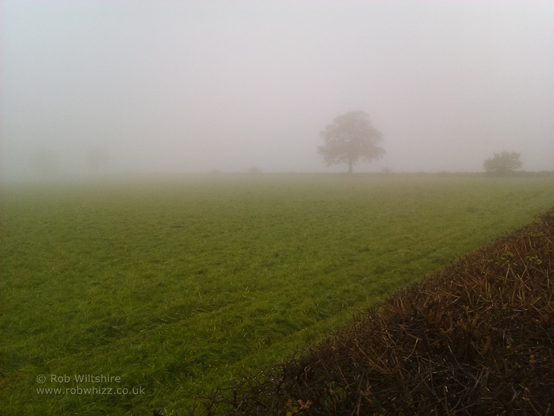 365 - Day 323 - Foggy Day
