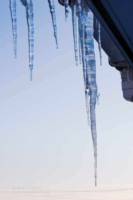 365 - Day 358 - Icicle
