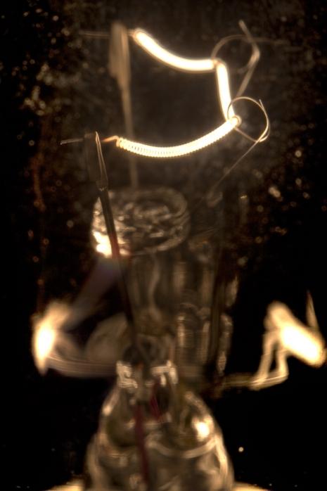 365 - Day 51 - Bulb